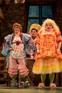 Cinderella at the Children's Theatre Company